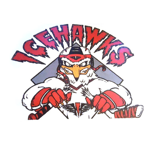 North Shore Ice Hawks Hockey Organization, North Shore Ice Hawks Hockey Organization logo, All Around Active, Give Back Program Clients