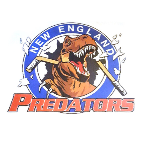 New England Predators Hockey Organization, New England Predators Hockey Organization logo, All Around Active, Give Back Program Clients
